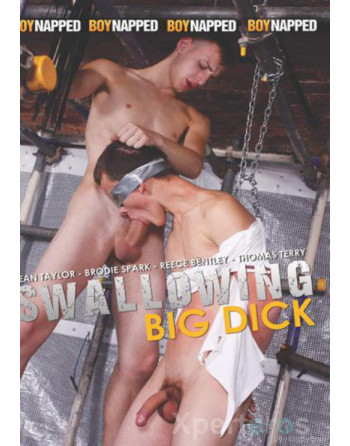 Artikelbild von Swallowing Big Dick