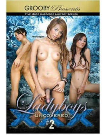 Artikelbild von Ladyboys Uncovered XXX 2
