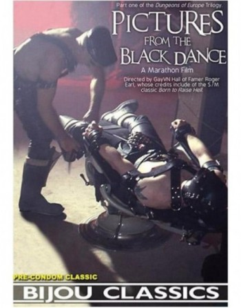 Artikelbild von Pictures from the Black Dance (1988)